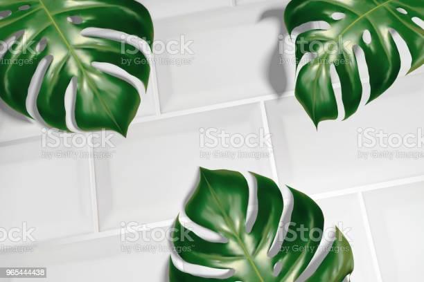 Liście Tropikalne Na Białych Płytkach - Stockowe grafiki wektorowe i więcej obrazów Bez ludzi