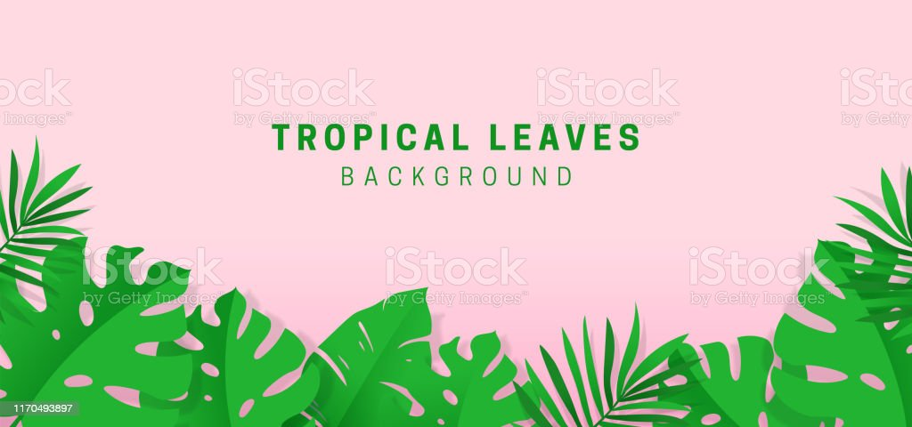 Tropical Leaves Origami Paper Cut Style Background Banner Template Design Monstera Palm Leave Ornament Decoration Vector Illustration On Pastel Pink Color Backdrop Hawaiian Jungle Vibe Summer Time Stock Illustration Download Image