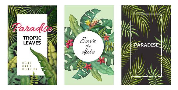 Tropical leaves posters. Jungle plants summer flyers, banana palm leaf pattern, foliage design. Vector palm leaf poster set