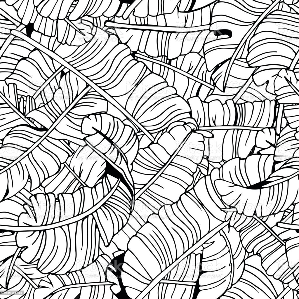 Tropical leaves seamless pattern exotic palm leaves background hand drawn black and white illustration stock illustration download image now