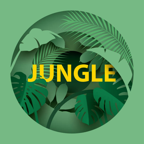 """Tropical leaves . Different tropical leaves with the inscription """"JUNGLE"""". Paper cut style. Vector illustration paper craft stock illustrations"""