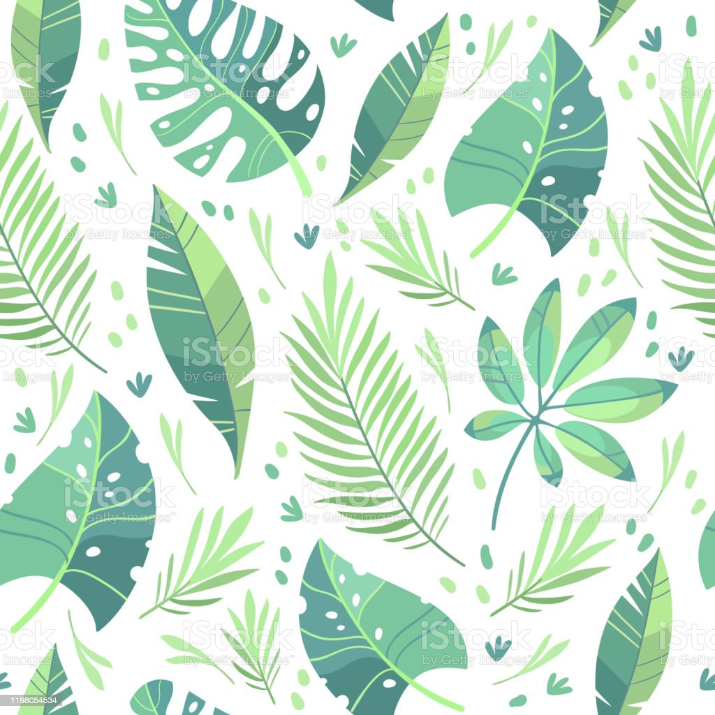 Tropical Leaves Vector Pattern Stock Illustration Download Image Now Istock 40 high quality collection of tropical leaves clipart by clipartmag. tropical leaves vector pattern stock illustration download image now istock