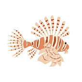Tropical lionfish on white background.