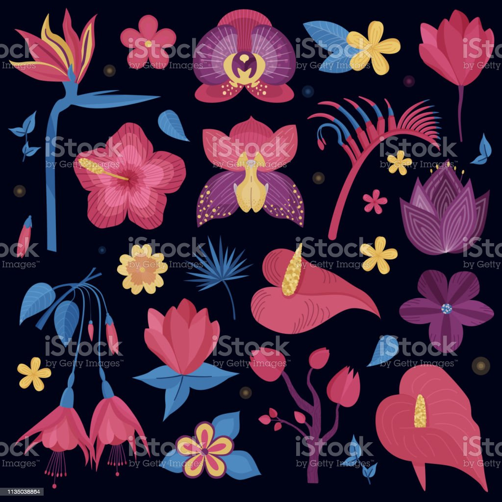 2a22eaa56 Tropical Night Flowers Set royalty-free tropical night flowers set stock vector  art &