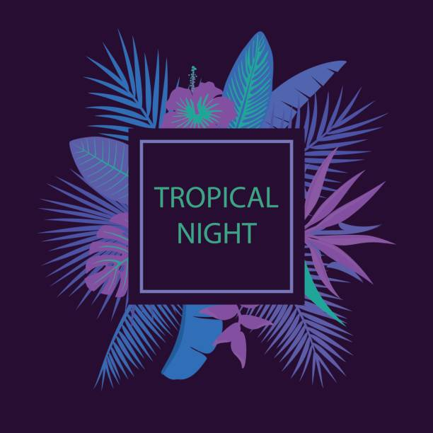 tropical night party background tropical night party background bird of paradise plant stock illustrations