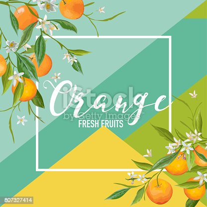 Tropical Orange Fruits and Flowers Summer Banner, Graphic Background, Exotic Floral Invitation, Flyer or Card. Modern Front Page in Vector