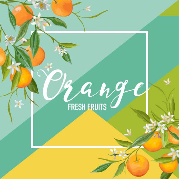 bildbanksillustrationer, clip art samt tecknat material och ikoner med tropiska orange frukter och blommor sommar banner, bakgrundsgrafik, exotisk blommig inbjudan, flygblad eller card. modern förstasidan i vektor - apelsin
