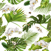 Vector botanical seamless pattern with tropical leaves, orchid flowers and butterflies on white. Background design for cosmetics, spa, wedding, web page. Best for hawaiian style print, wrapping paper