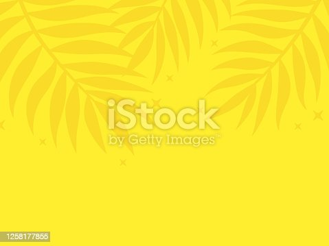 Tropical palm leaf frond yellow background top edge border design with space for your copy.