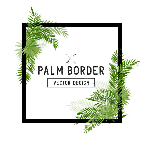 tropical palm leaf border vector - palm leaf stock illustrations, clip art, cartoons, & icons