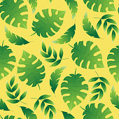 Tropical palm leaves, botanical vector illustration, seamless pattern. Flat style for spring and summer design. For paper, cover, fabric, gift wrap, wall art, home decor.