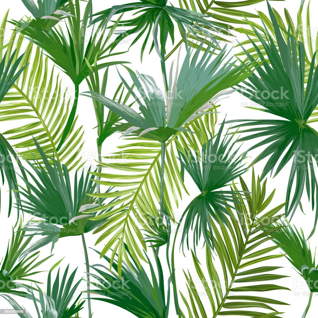 Tropical Palm Leaves Jungle Leaves Seamless Vector Floral Pattern Background Stock Illustration Download Image Now Istock An ultimate jungle texture bundle in juicy and bright colours. tropical palm leaves jungle leaves seamless vector floral pattern background stock illustration download image now istock