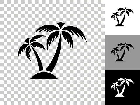 Tropical Palm Tree Icon on Checkerboard Transparent Background