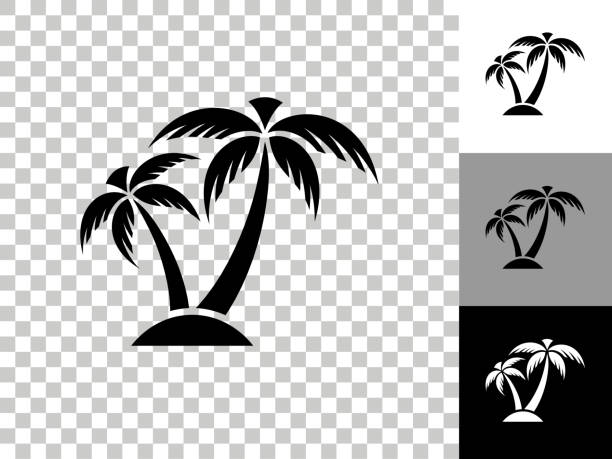 Tropical Palm Tree Icon on Checkerboard Transparent Background vector art illustration