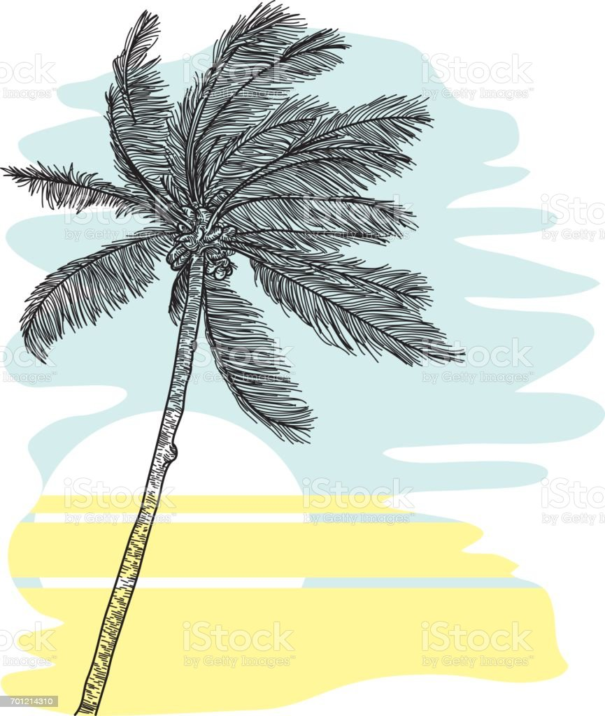 Tropical Palm Tree vector art illustration