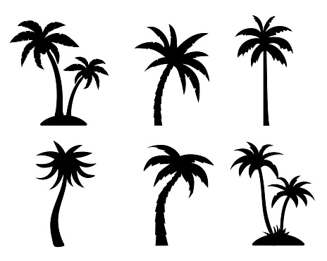 Tropical palm trees black silhouette collection. Summer vacation concept. Vector isolated on white