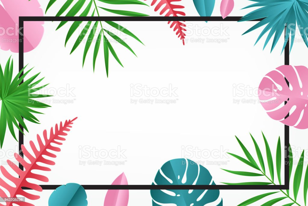 Tropical Paper Palm Monstera Leaves Pattern With Frame Summer ...