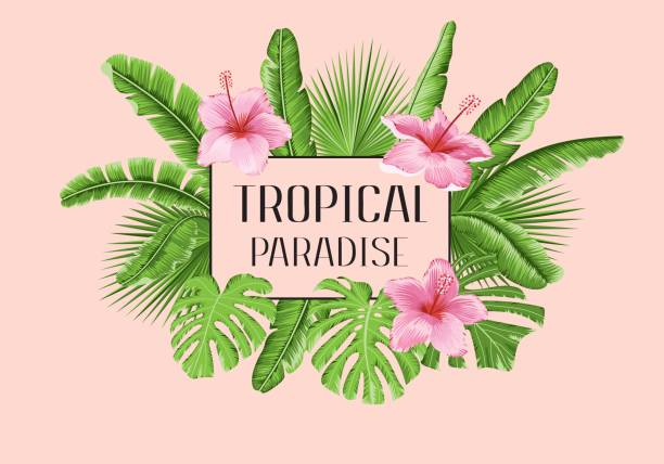 Tropical paradise palms vector art illustration