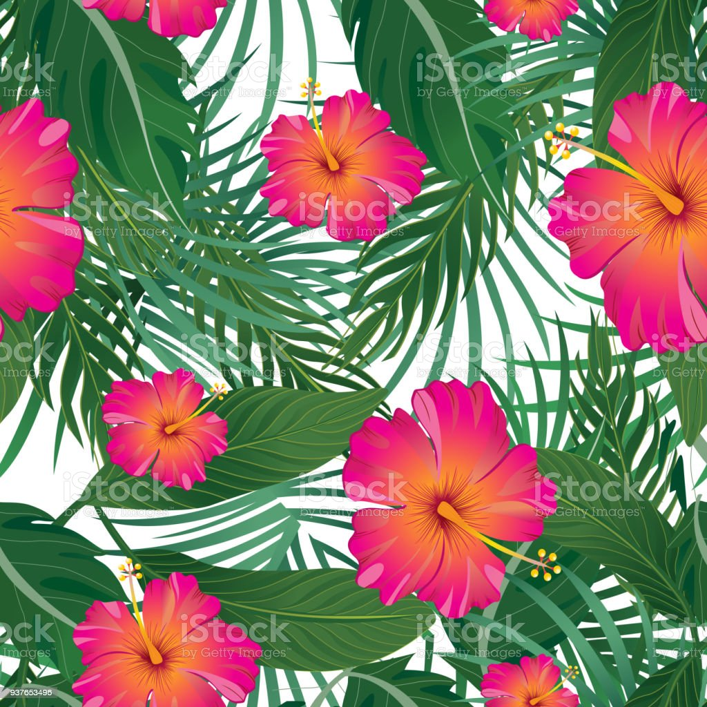 Tropical Pattern Isolated On White Background Vector Illustration ...