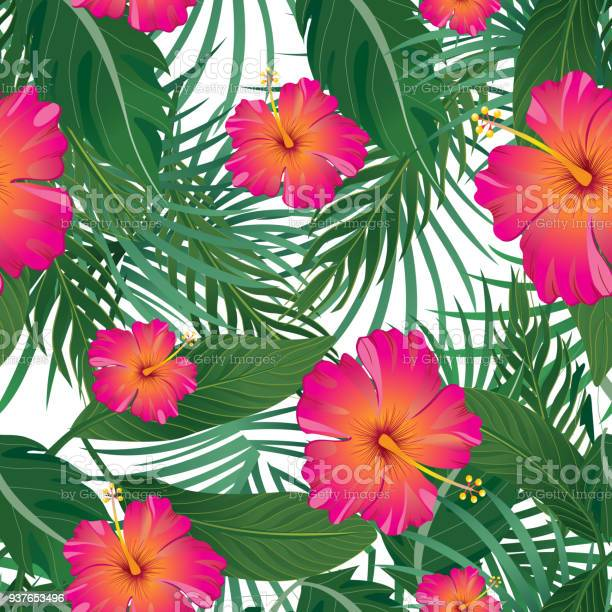 Tropical pattern isolated on white background vector illustration vector id937653496?b=1&k=6&m=937653496&s=612x612&h=yxmg9afsrsngaftfp9 zlbt9qyx4gipjutqwh8we3wo=