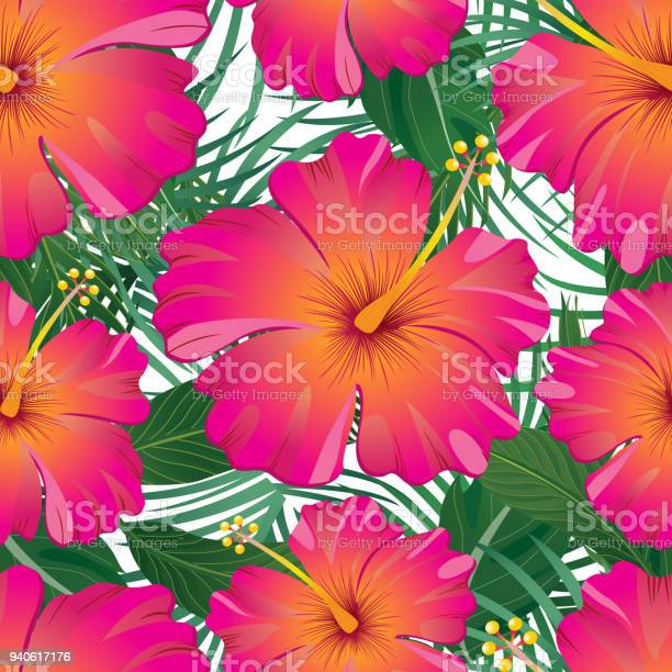 Tropical pattern isolated on white background vector illustration vector id940617176?b=1&k=6&m=940617176&s=612x612&h=rm7flczhpso0hgluhge1ojkshtsyjjft3mo0oecl7o8=