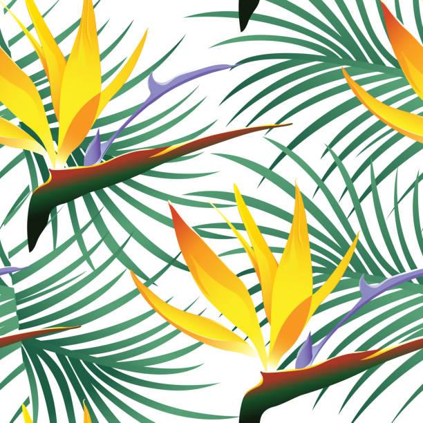 Tropische Muster, Isolated on White Background - Vektor-Illustration – Vektorgrafik
