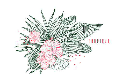 Tropical pattern with palm, banana leaves and hibiscus flower. Beach vacation, label, outline illustrations for tourism and travel industry. Hand drawn tropical plants.