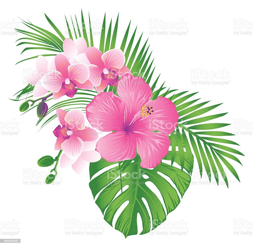 Tropical Pink Flowers Stock Vector Art More Images Of 2015
