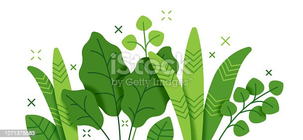 istock Tropical Plant and Foliage Growth Modern Background stock illustration 1271375583