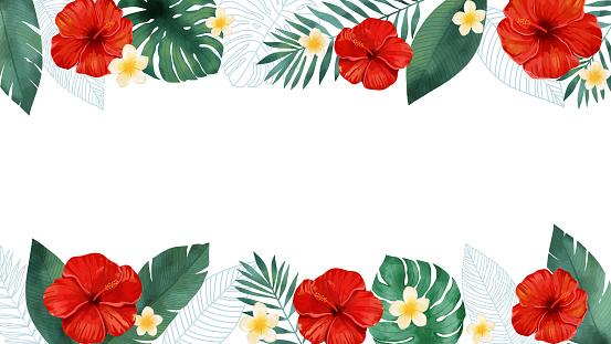Tropical plant hibiscus and plumeria frame