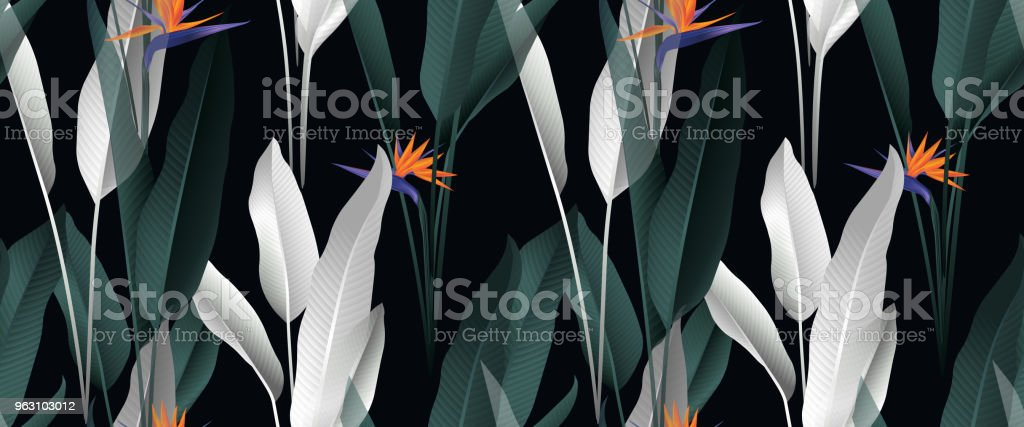 Tropical plant seamless pattern, palm leaves and Bird of paradise flowers on black background vector art illustration