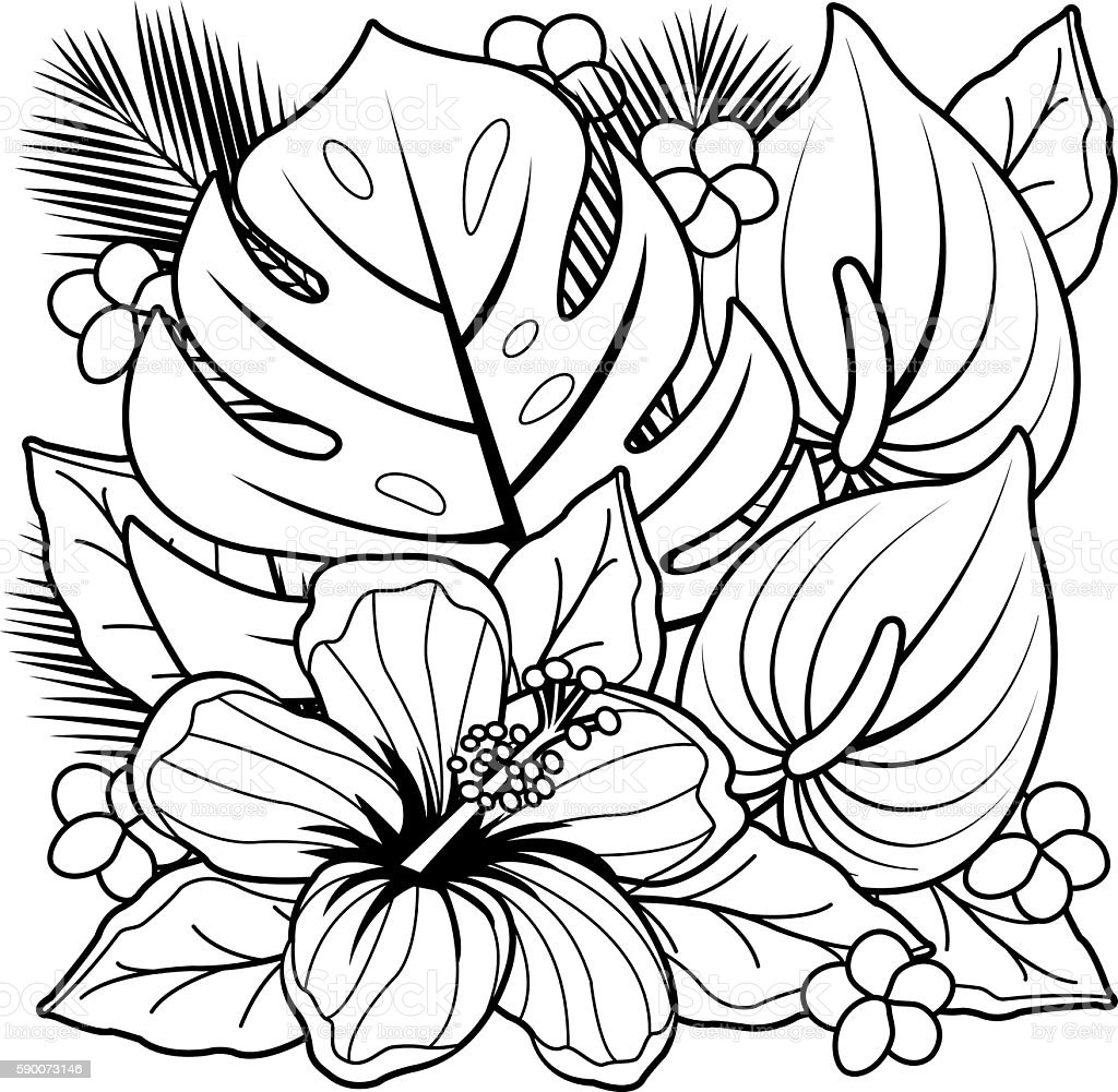 Coloring pages trees and flowers - Big Island Hawaii Islands Hawaii Islands Palm Tree Plant Single Flower Tropical Plants And Hibiscus Flowers Coloring Book
