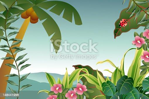 istock Tropical Plants Background 148441998