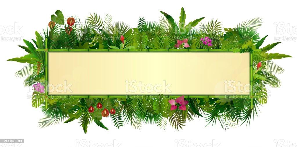 Tropische Pflanzen Hintergrund Stock Vektor Art und mehr Bilder von ...