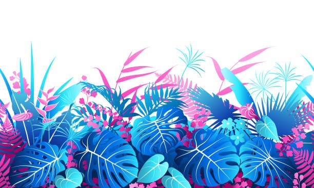 ilustrações de stock, clip art, desenhos animados e ícones de tropical plants  colorful  seamless border - angiospermas