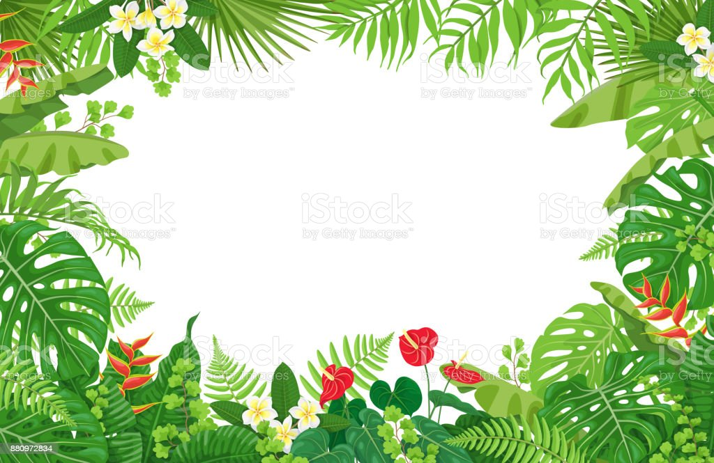 Tropical Plants Frame vector art illustration