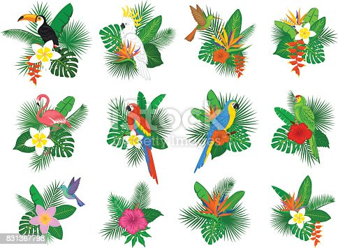 tropical plants leaves flower arrangements with flamingo, parrots, toco toucan,hummingbird, hibiscus, strelitzia, frangipani, heliconia