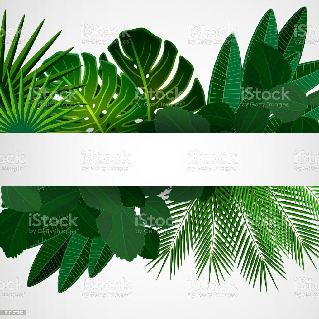 Tropical plants vector art illustration