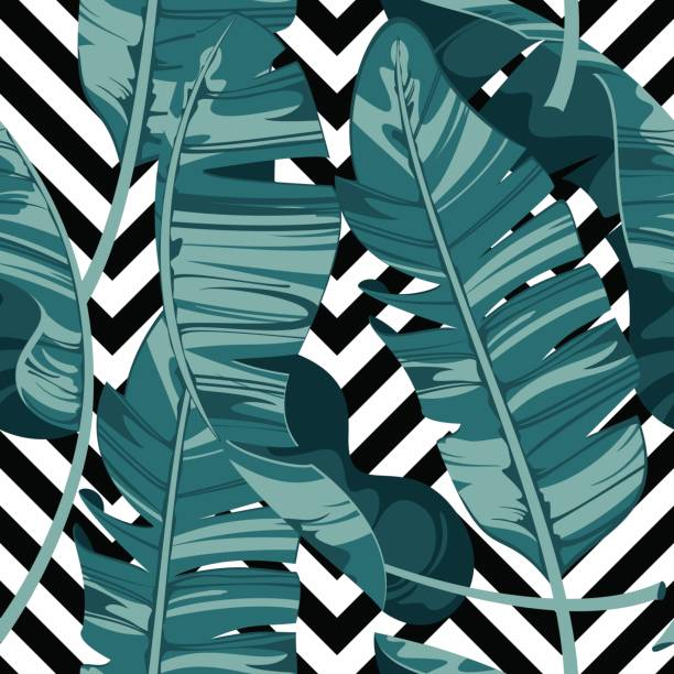 Tropical print summer exotic plant. Banana leaves. Pattern, seamless floral vector. Nature wallpaper on geometric background. vector art illustration