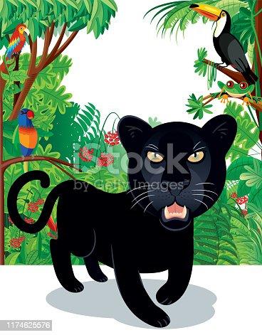 Vector Black Leopard and Amazon Rain forest