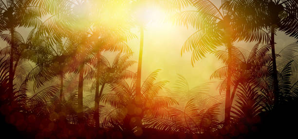 tropical rainforest jungle background with palm tree - jungle stock illustrations