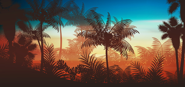 Tropical rainforest jungle background with palm tree