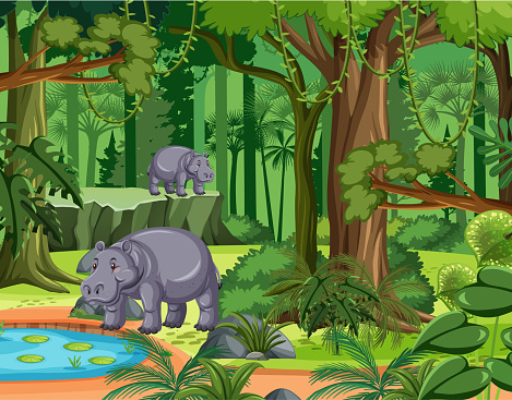 Tropical rainforest scene with hippopotamus family