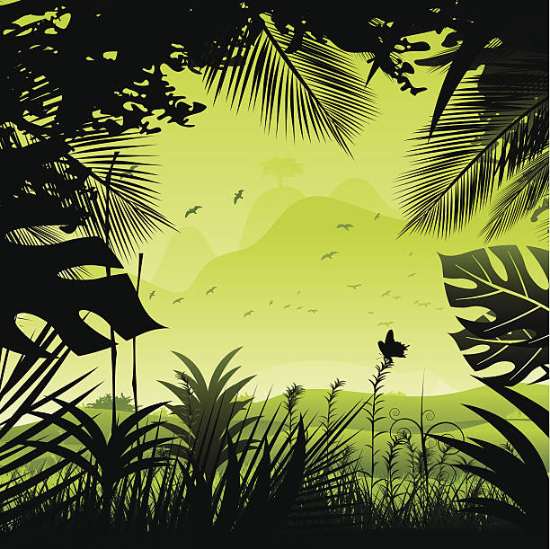 Tropical rainforest. A tropical rainforest drawing with green colors. amazon stock illustrations