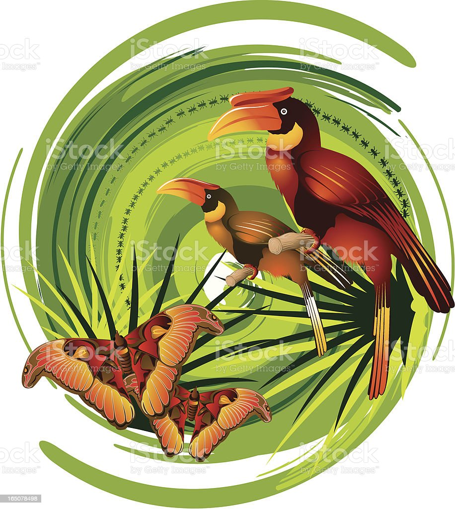 Tropical Rainforest vector art illustration