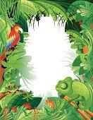 Vector illustration Tropical rainforest