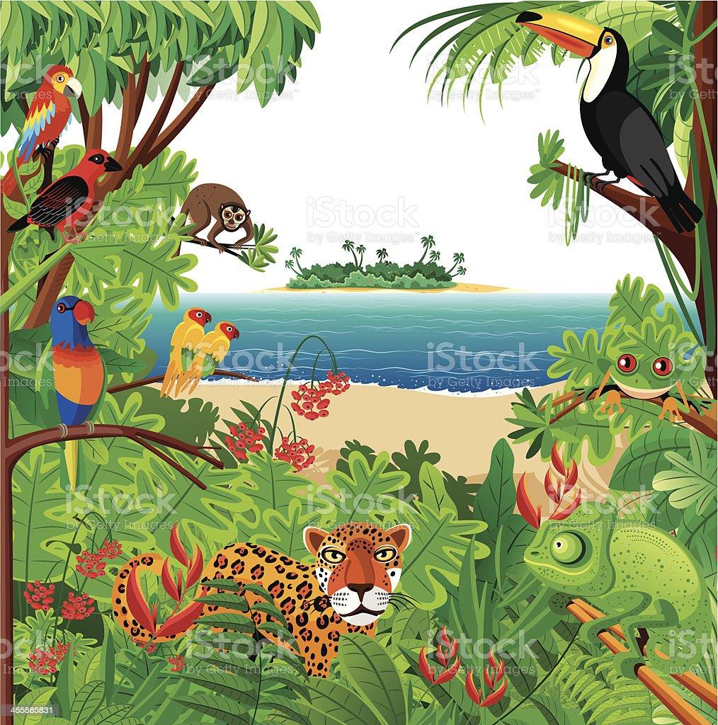 Tropical rainforest royalty-free stock vector art