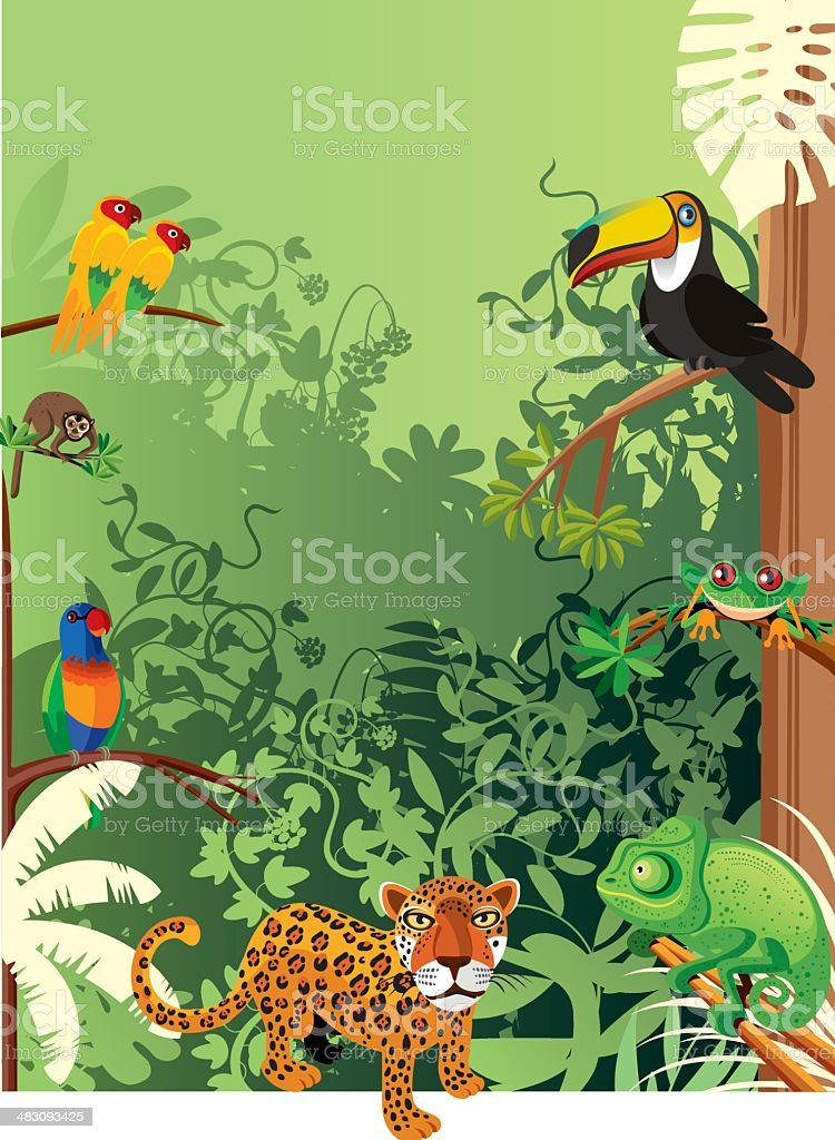 Tropical rainforest royalty-free stock vector art