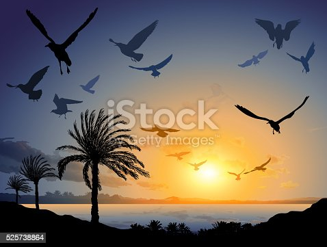 Vector illustration of Tropical sea landscape with flock of flying bird