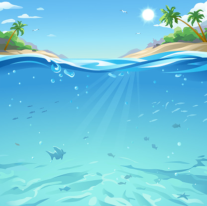 Tropical Sea Under And Above Water Surface
